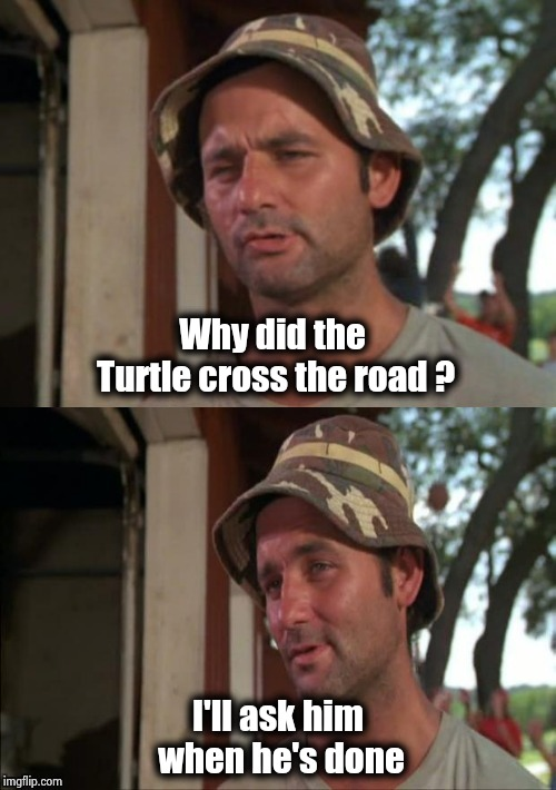 Bill Murray bad joke | Why did the Turtle cross the road ? I'll ask him when he's done | image tagged in bill murray bad joke | made w/ Imgflip meme maker