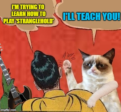 I'M TRYING TO LEARN HOW TO PLAY 'STRANGLEHOLD' I'LL TEACH YOU! | made w/ Imgflip meme maker