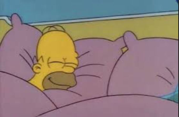 High Quality how i sleep homer simpson Blank Meme Template