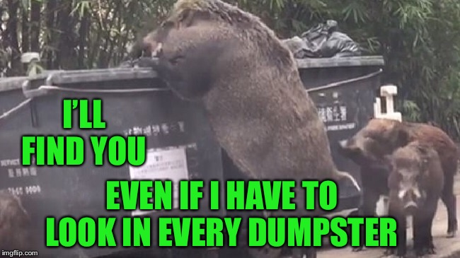 I'LL FIND YOU EVEN IF I HAVE TO LOOK IN EVERY DUMPSTER | made w/ Imgflip meme maker