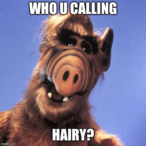 Alf  | WHO U CALLING HAIRY? | image tagged in alf | made w/ Imgflip meme maker
