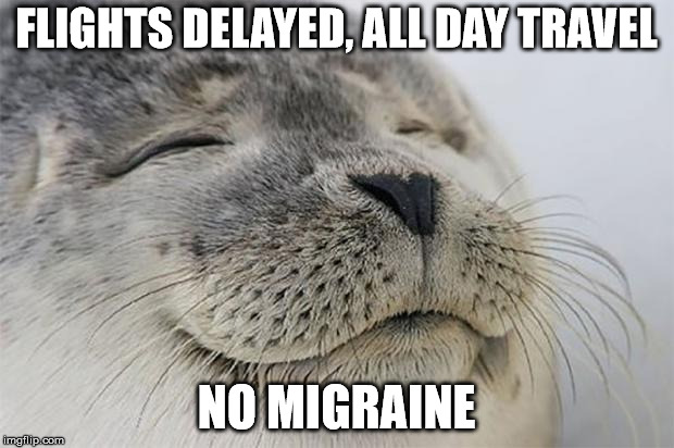 Satisfied Seal Meme |  FLIGHTS DELAYED, ALL DAY TRAVEL; NO MIGRAINE | image tagged in memes,satisfied seal | made w/ Imgflip meme maker