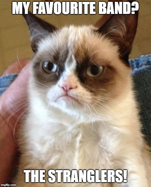 Grumpy Cat Meme | MY FAVOURITE BAND? THE STRANGLERS! | image tagged in memes,grumpy cat | made w/ Imgflip meme maker