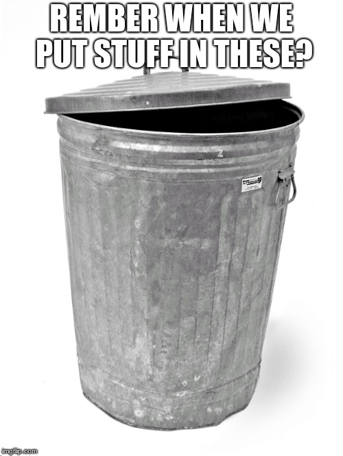 Trash Can | REMBER WHEN WE PUT STUFF IN THESE? | image tagged in trash can | made w/ Imgflip meme maker