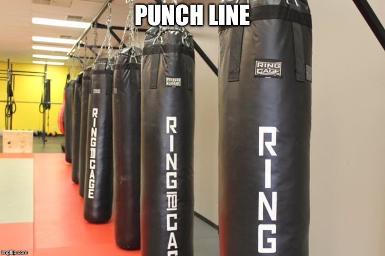 Punching bags | PUNCH LINE | image tagged in punching bags | made w/ Imgflip meme maker