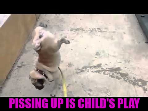 PISSING UP IS CHILD'S PLAY | made w/ Imgflip meme maker