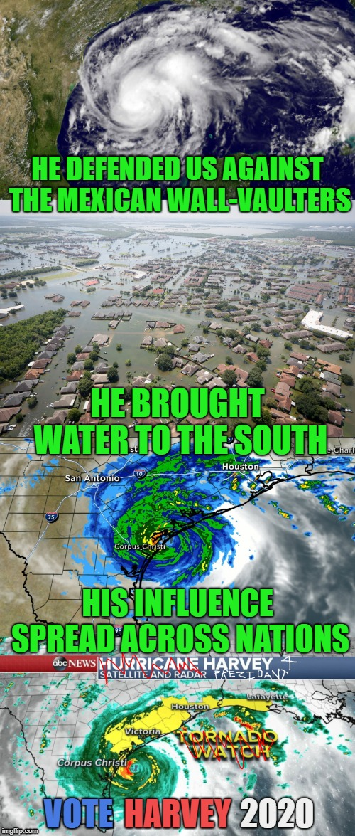 Hurricane Harvey 2020 | HE DEFENDED US AGAINST THE MEXICAN WALL-VAULTERS HE BROUGHT WATER TO THE SOUTH HIS INFLUENCE SPREAD ACROSS NATIONS VOTE HARVEY 2020 | image tagged in vote harvey,harvey 2020,2020 election,hurricane harvey,not a tornado,war on drugs | made w/ Imgflip meme maker