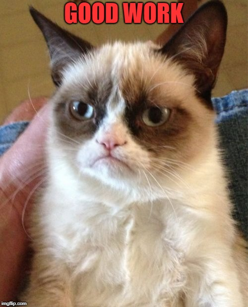 Grumpy Cat Meme | GOOD WORK | image tagged in memes,grumpy cat | made w/ Imgflip meme maker