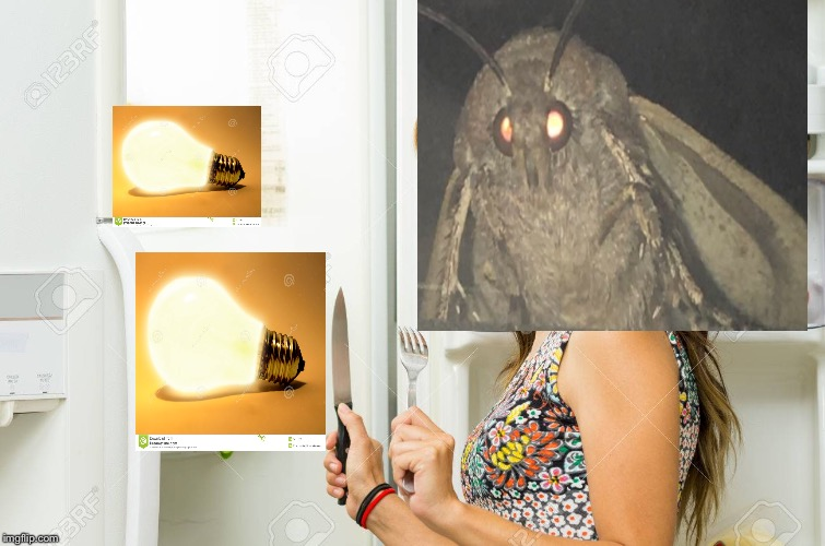 Hungry Moth | image tagged in moths | made w/ Imgflip meme maker