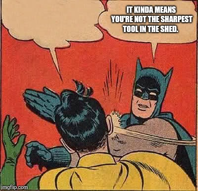 Batman Slapping Robin Meme | IT KINDA MEANS YOU'RE NOT THE SHARPEST TOOL IN THE SHED. | image tagged in memes,batman slapping robin | made w/ Imgflip meme maker