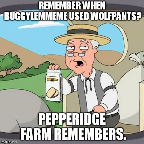 Rest in spaghetti. Never forgeti. | REMEMBER WHEN BUGGYLEMMEME USED WOLFPANTS? PEPPERIDGE FARM REMEMBERS. | image tagged in memes,pepperidge farm remembers,buggylememe,rip | made w/ Imgflip meme maker