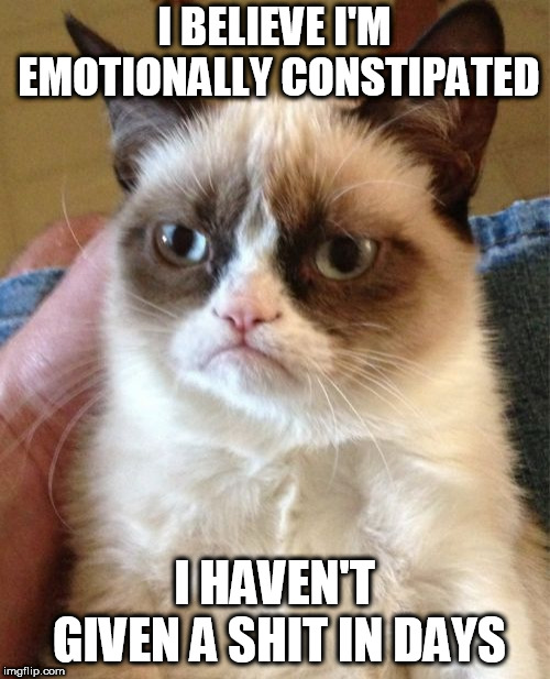A different kind of dirty for Dirty Meme Week? 9-24 to 9-30 via socrates. | I BELIEVE I'M EMOTIONALLY CONSTIPATED I HAVEN'T GIVEN A SHIT IN DAYS | image tagged in memes,grumpy cat,dirty meme week | made w/ Imgflip meme maker