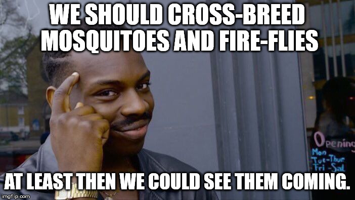 Roll Safe Think About It Meme | WE SHOULD CROSS-BREED MOSQUITOES AND FIRE-FLIES AT LEAST THEN WE COULD SEE THEM COMING. | image tagged in memes,roll safe think about it | made w/ Imgflip meme maker