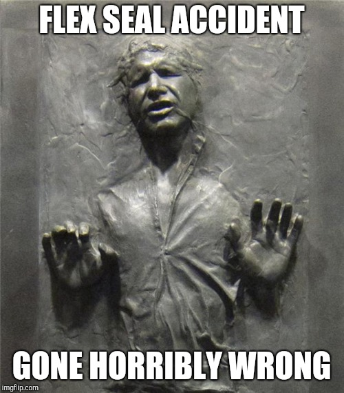 Should have read the directions |  FLEX SEAL ACCIDENT; GONE HORRIBLY WRONG | image tagged in han solo frozen carbonite,flex seal | made w/ Imgflip meme maker