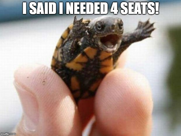 happy baby turtle | I SAID I NEEDED 4 SEATS! | image tagged in happy baby turtle | made w/ Imgflip meme maker
