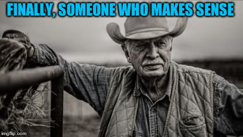 So God Made A Farmer Meme | FINALLY, SOMEONE WHO MAKES SENSE | image tagged in memes,so god made a farmer | made w/ Imgflip meme maker