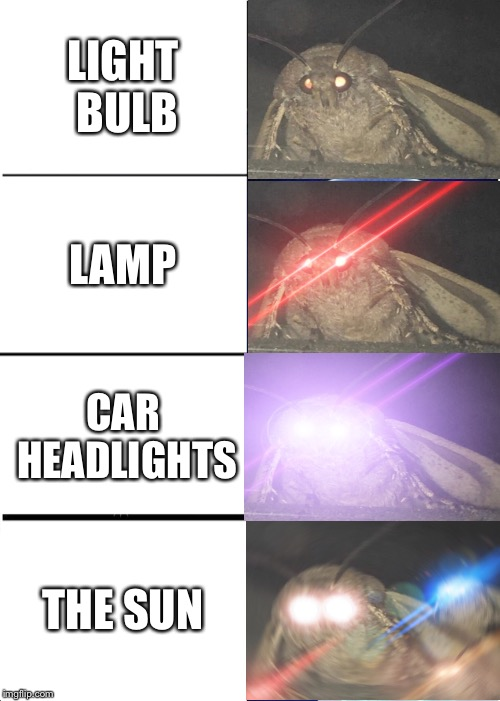 Where are the Lämps Bröther | LIGHT BULB LAMP CAR HEADLIGHTS THE SUN | image tagged in memes,expanding brain,lamp,brothers,moths,funny | made w/ Imgflip meme maker