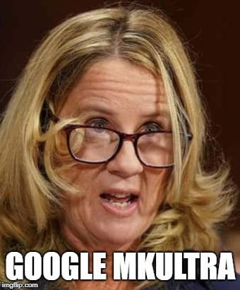 Christine Ford | GOOGLE MKULTRA | image tagged in christine ford | made w/ Imgflip meme maker