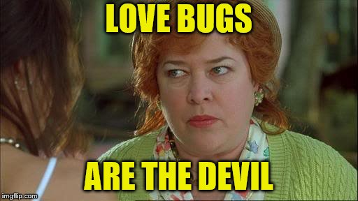 Waterboy Kathy Bates Devil | LOVE BUGS ARE THE DEVIL | image tagged in waterboy kathy bates devil | made w/ Imgflip meme maker