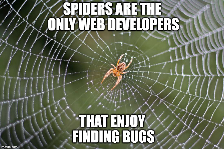 Web developers lament. | SPIDERS ARE THE ONLY WEB DEVELOPERS THAT ENJOY FINDING BUGS | image tagged in spider web | made w/ Imgflip meme maker