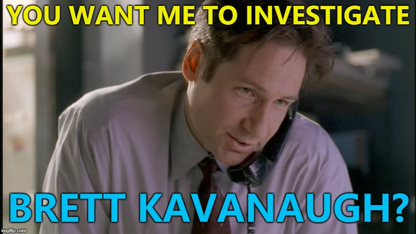 Trump gets the best FBI agent he knows on the case... :) | YOU WANT ME TO INVESTIGATE BRETT KAVANAUGH? | image tagged in x files mulder on phone,memes,brett kavanaugh,fbi,supreme court | made w/ Imgflip meme maker