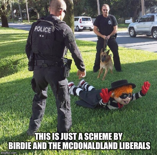 THIS IS JUST A SCHEME BY BIRDIE AND THE MCDONALDLAND LIBERALS | made w/ Imgflip meme maker