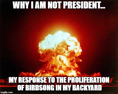 Nuclear Explosion | WHY I AM NOT PRESIDENT... MY RESPONSE TO THE PROLIFERATION OF BIRDSONG IN MY BACKYARD | image tagged in memes,nuclear explosion | made w/ Imgflip meme maker