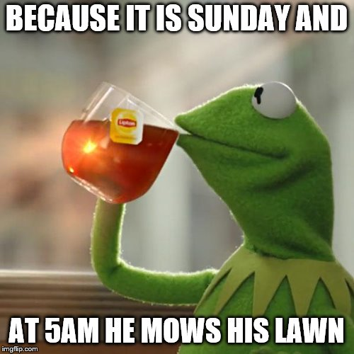 But Thats None Of My Business Meme | BECAUSE IT IS SUNDAY AND AT 5AM HE MOWS HIS LAWN | image tagged in memes,but thats none of my business,kermit the frog | made w/ Imgflip meme maker