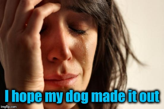 First World Problems Meme | I hope my dog made it out | image tagged in memes,first world problems | made w/ Imgflip meme maker