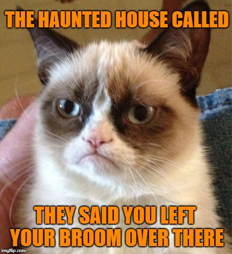 Witchy Woman | THE HAUNTED HOUSE CALLED THEY SAID YOU LEFT YOUR BROOM OVER THERE | image tagged in funny memes,grumpy,grumpy cat,witch,haunted house | made w/ Imgflip meme maker