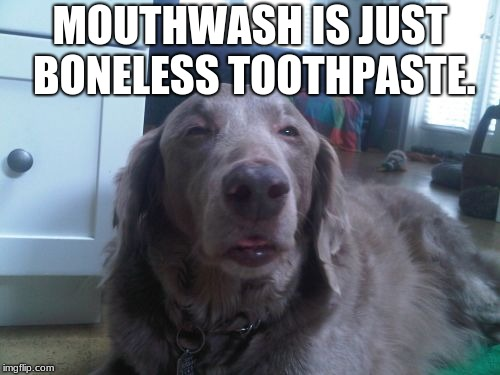 High Dog | MOUTHWASH IS JUST BONELESS TOOTHPASTE. | image tagged in memes,high dog | made w/ Imgflip meme maker