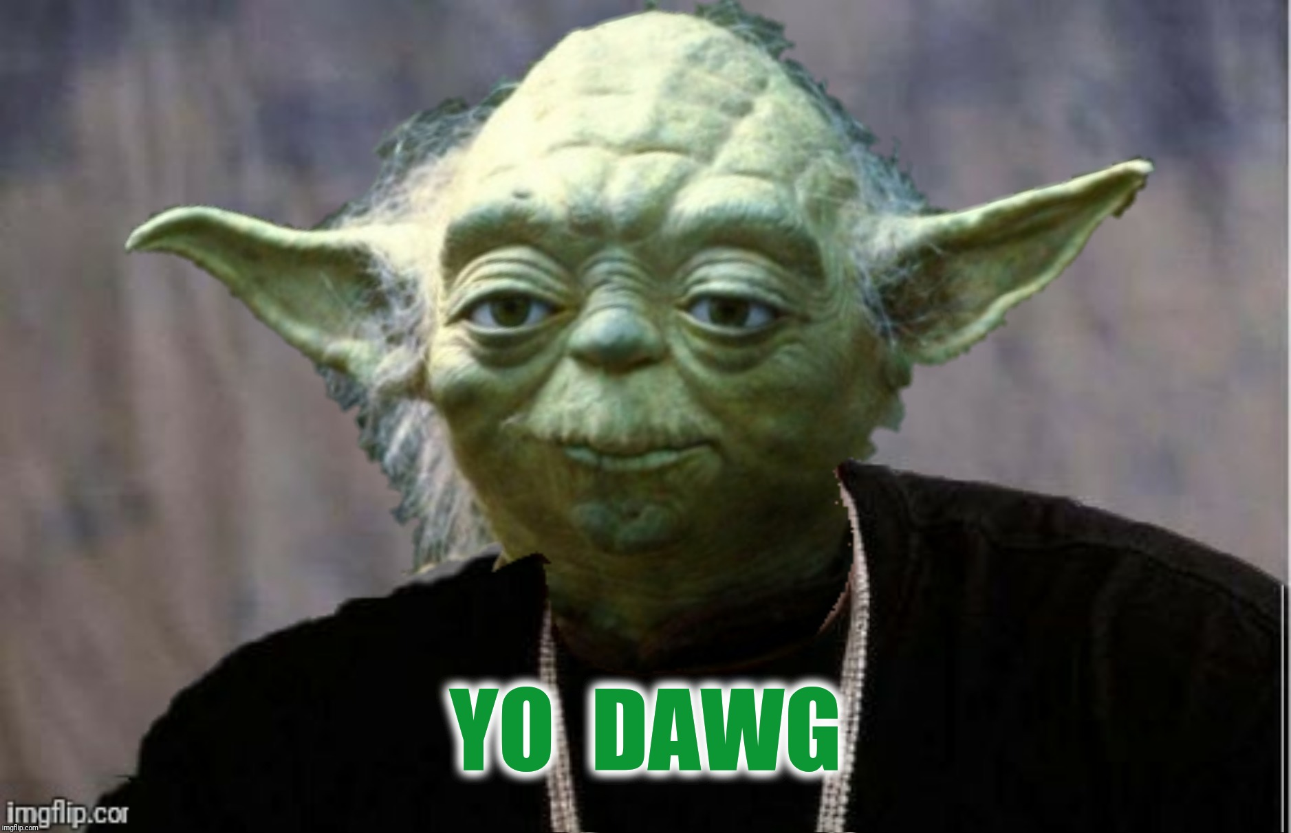 Bad Photoshop Sunday presents:  Heard you! | YO  DAWG | image tagged in bad photoshop sunday,yoda,yo dawg heard you | made w/ Imgflip meme maker
