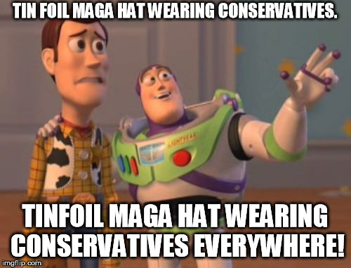 X, X Everywhere | TIN FOIL MAGA HAT WEARING CONSERVATIVES. TINFOIL MAGA HAT WEARING CONSERVATIVES EVERYWHERE! | image tagged in x x everywhere | made w/ Imgflip meme maker
