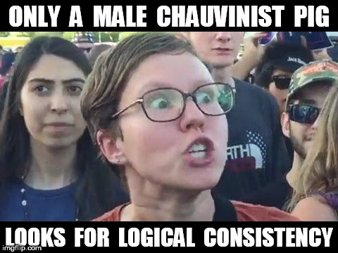Angry sjw | ONLY  A  MALE  CHAUVINIST  PIG LOOKS  FOR  LOGICAL  CONSISTENCY | image tagged in angry sjw | made w/ Imgflip meme maker