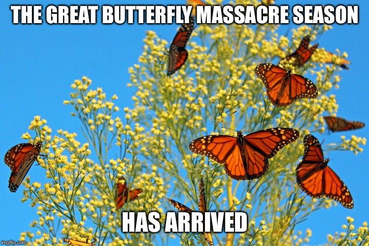 The great butterfly massacre | THE GREAT BUTTERFLY MASSACRE SEASON HAS ARRIVED | image tagged in cars,bugs | made w/ Imgflip meme maker
