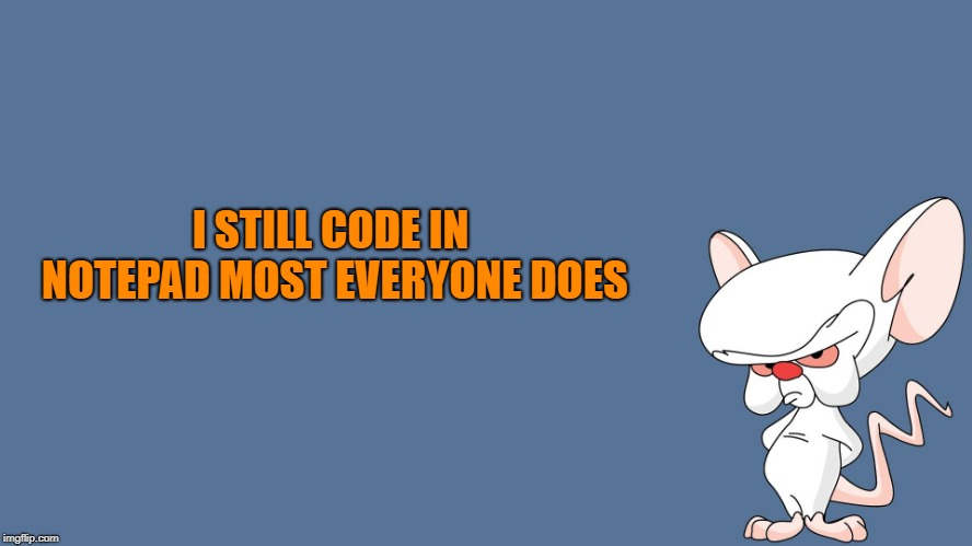 the brain | I STILL CODE IN NOTEPAD MOST EVERYONE DOES | image tagged in the brain | made w/ Imgflip meme maker