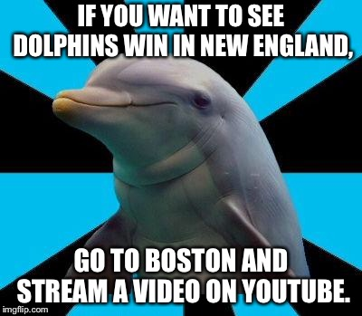You can see Dolphins win in New England...on YouTube | IF YOU WANT TO SEE DOLPHINS WIN IN NEW ENGLAND, GO TO BOSTON AND STREAM A VIDEO ON YOUTUBE. | image tagged in dolphin,memes,patriots,youtube,boston,video | made w/ Imgflip meme maker
