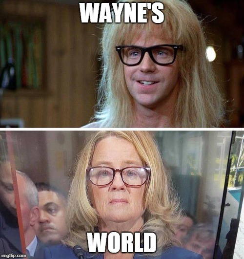 Wayne's World | WAYNE'S WORLD | image tagged in wayne's world,back to the future | made w/ Imgflip meme maker