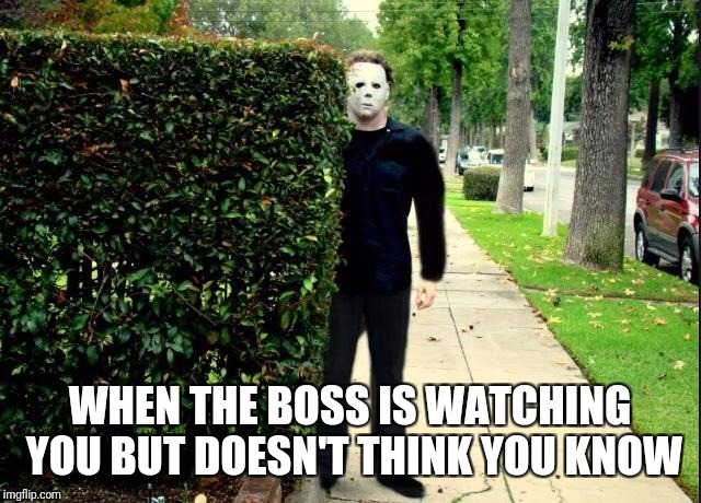 Michael Myers Bush Stalking | WHEN THE BOSS IS WATCHING YOU BUT DOESN'T THINK YOU KNOW | image tagged in michael myers bush stalking | made w/ Imgflip meme maker
