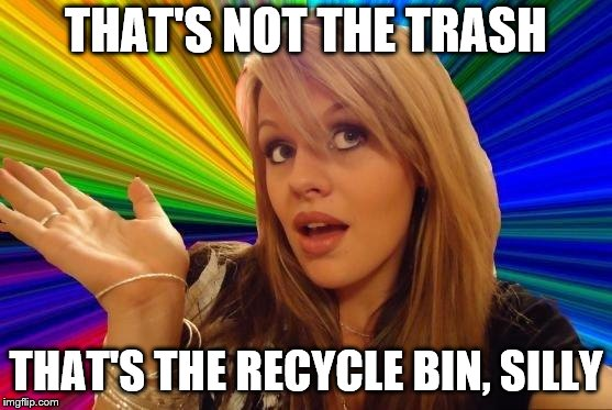 Dumb Blonde Meme | THAT'S NOT THE TRASH THAT'S THE RECYCLE BIN, SILLY | image tagged in memes,dumb blonde | made w/ Imgflip meme maker