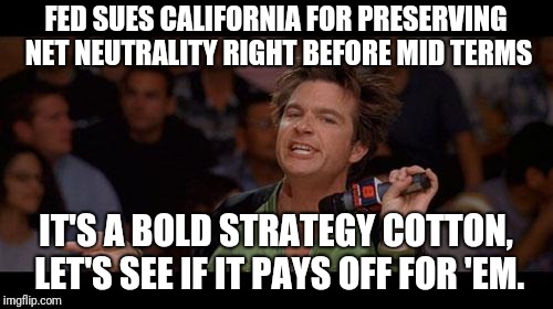 Bold Move Cotton | FED SUES CALIFORNIA FOR PRESERVING NET NEUTRALITY RIGHT BEFORE MID TERMS IT'S A BOLD STRATEGY COTTON, LET'S SEE IF IT PAYS OFF FOR 'EM. | image tagged in bold move cotton,AdviceAnimals | made w/ Imgflip meme maker