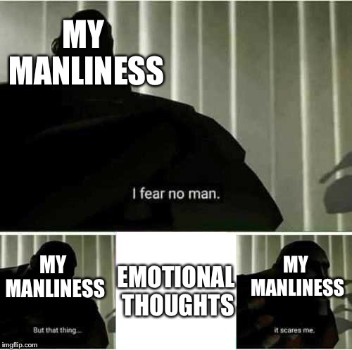 This is the most ironic way I can think of |  MY MANLINESS; EMOTIONAL THOUGHTS; MY MANLINESS; MY MANLINESS | image tagged in i fear no man,memes,ironic,emotional,thoughts | made w/ Imgflip meme maker
