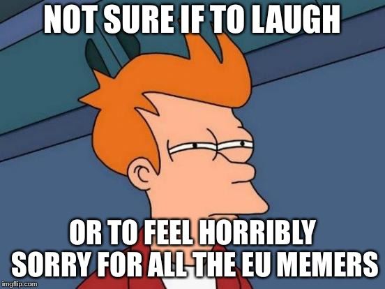 Futurama Fry Meme | NOT SURE IF TO LAUGH OR TO FEEL HORRIBLY SORRY FOR ALL THE EU MEMERS | image tagged in memes,futurama fry | made w/ Imgflip meme maker