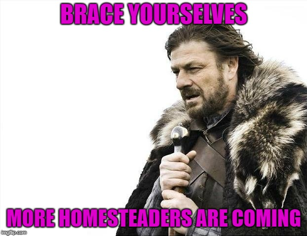 Brace Yourselves X is Coming Meme | BRACE YOURSELVES MORE HOMESTEADERS ARE COMING | image tagged in memes,brace yourselves x is coming | made w/ Imgflip meme maker