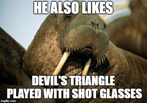 Sexual Deviant Walrus Meme | HE ALSO LIKES DEVIL'S TRIANGLE PLAYED WITH SHOT GLASSES | image tagged in memes,sexual deviant walrus | made w/ Imgflip meme maker