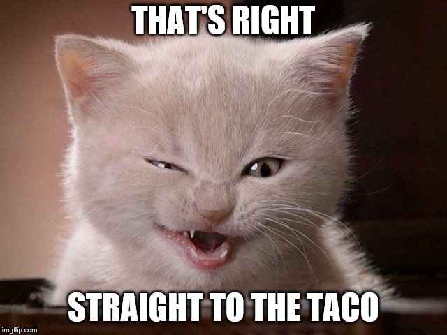 THAT'S RIGHT STRAIGHT TO THE TACO | made w/ Imgflip meme maker