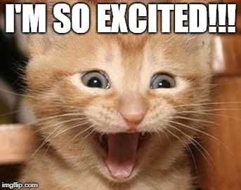 Excited Cat | I'M SO EXCITED!!! | image tagged in memes,excited cat | made w/ Imgflip meme maker