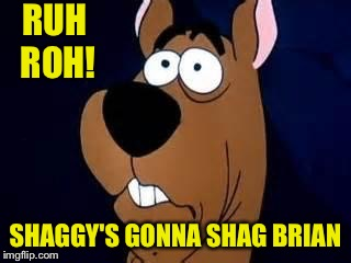 Scooby Doo Surprised | RUH ROH! SHAGGY'S GONNA SHAG BRIAN | image tagged in scooby doo surprised | made w/ Imgflip meme maker