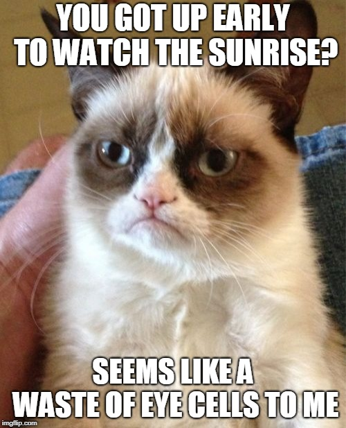 It's Not Worth the Price You Pay For it (◔◡◔) | YOU GOT UP EARLY TO WATCH THE SUNRISE? SEEMS LIKE A WASTE OF EYE CELLS TO ME | image tagged in memes,grumpy cat,inspiration,demotivational,nature,sunrise | made w/ Imgflip meme maker