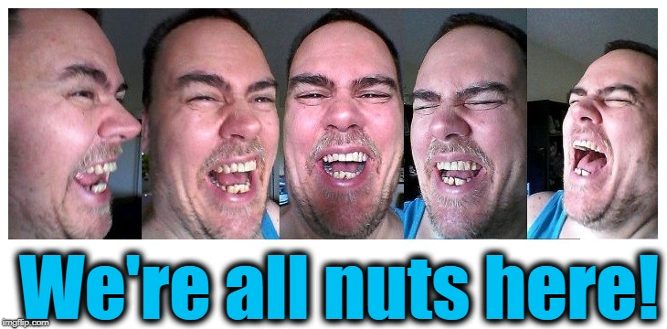 LOL | We're all nuts here! | image tagged in lol | made w/ Imgflip meme maker